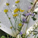 libro usato salva l'ambiente